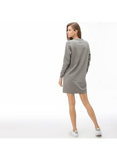 Lacoste Kadın  Elbise EF2003.03G Gri